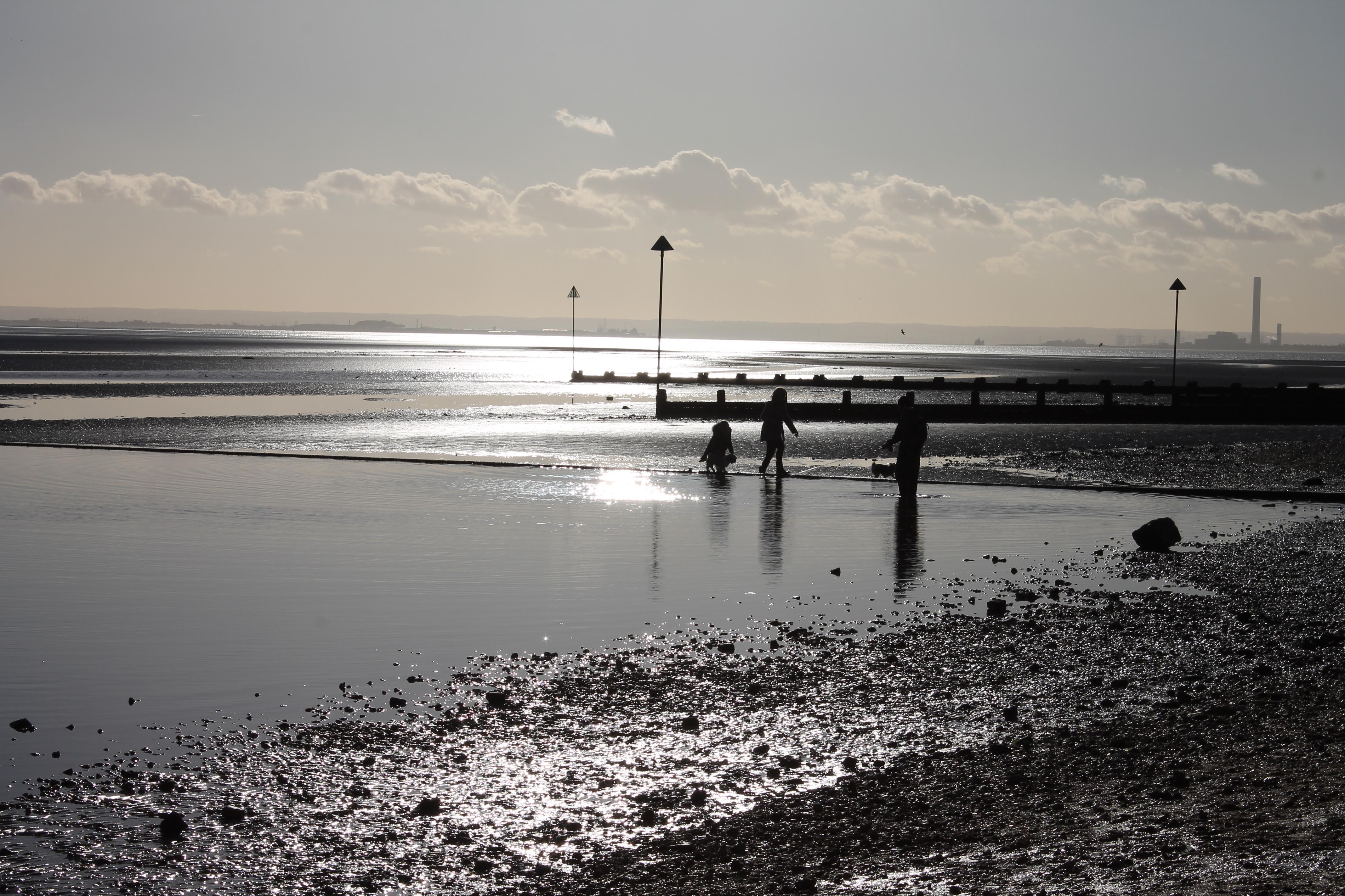 winter sun on the beach